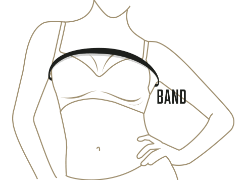 Bra Size Finder