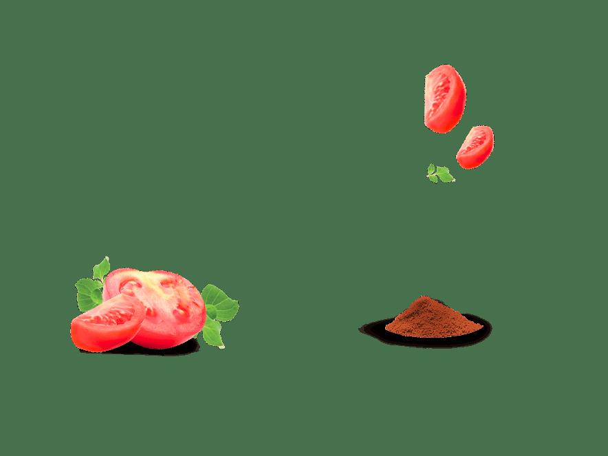 Bio-Knusperbrot Aperitif Tomate Paprika