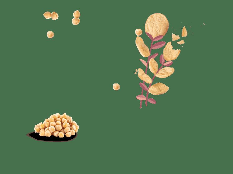 Bio-Chips_mit_Kichererbsen