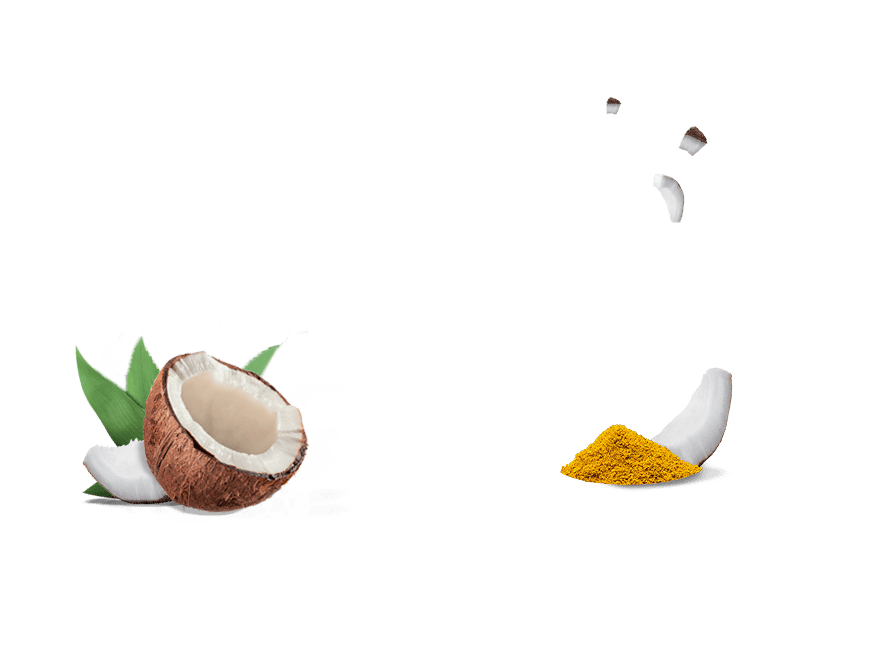 Tostadas Crujientes Aperitivo Ecológico Coco Curry