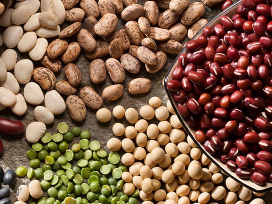 proteines_vegetales_legumineuses
