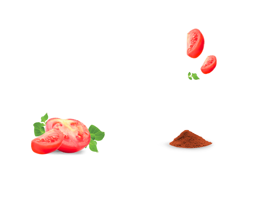 ingredients_tomate_paprika