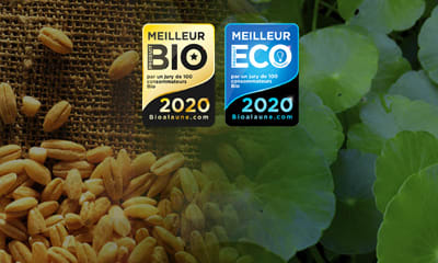 BEST ORGANIC PRODUCTS 2020