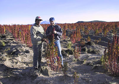 Didier Perréol discovered quinoa