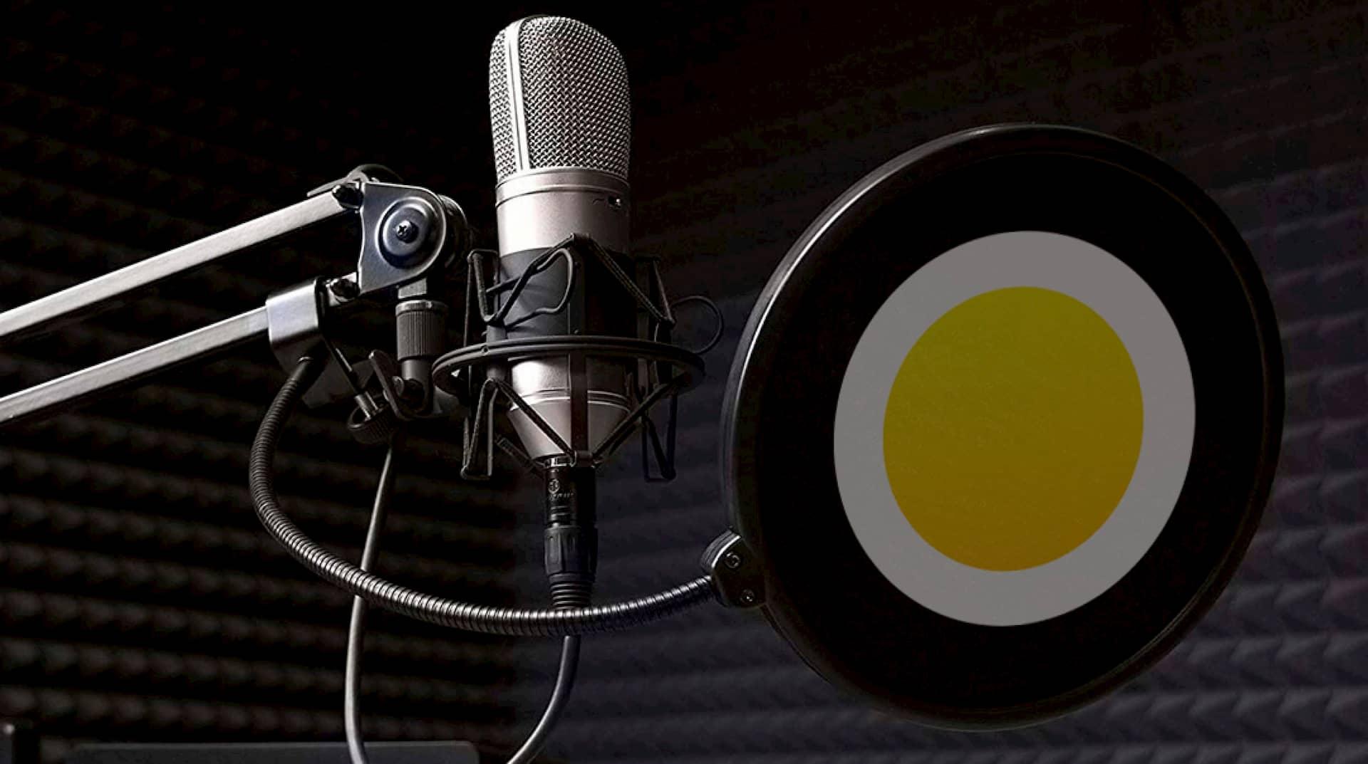 Брендированный микрофон.