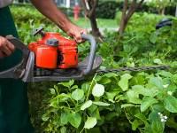travaux-de-jardinage