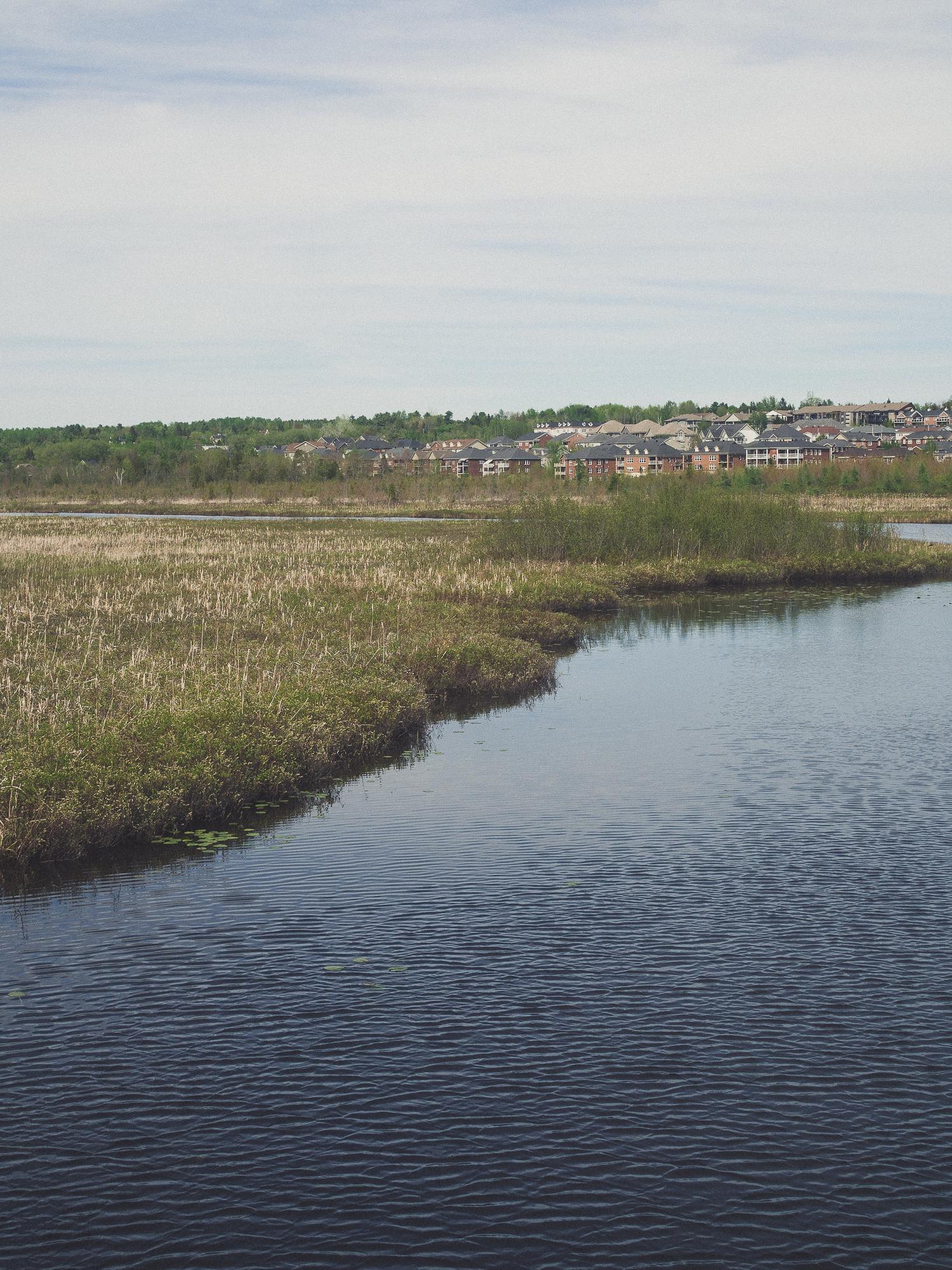 le marais de la riviere aux cerises