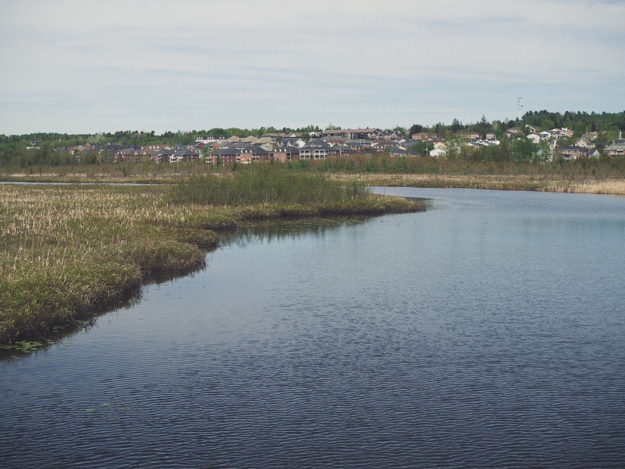 le marais de la rivière aux cerises