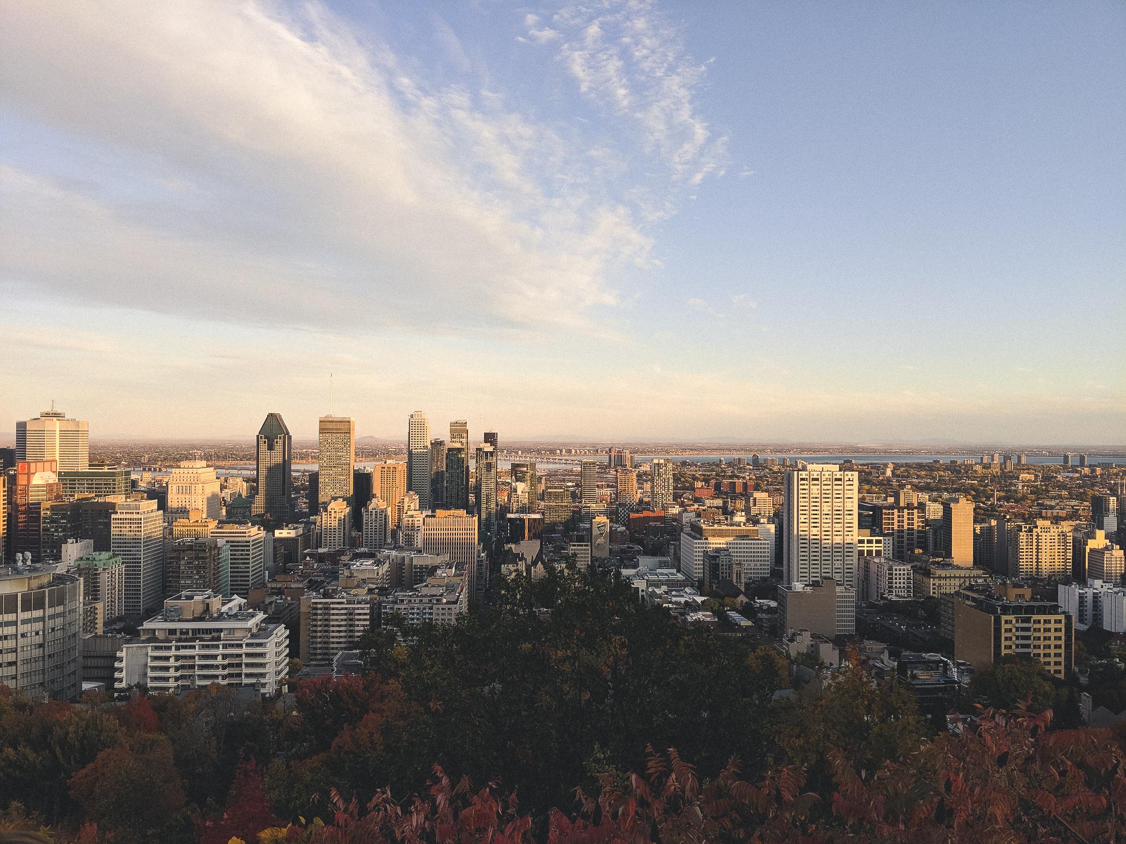 vue de Montréal en automne, du haut du parc du Mont-Royal