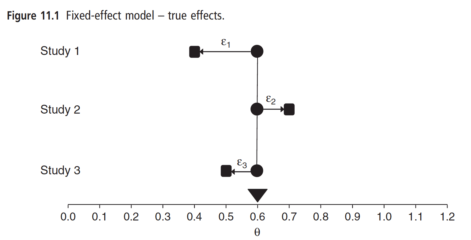 How sampling error can make the observed effect differ from the true common effect
