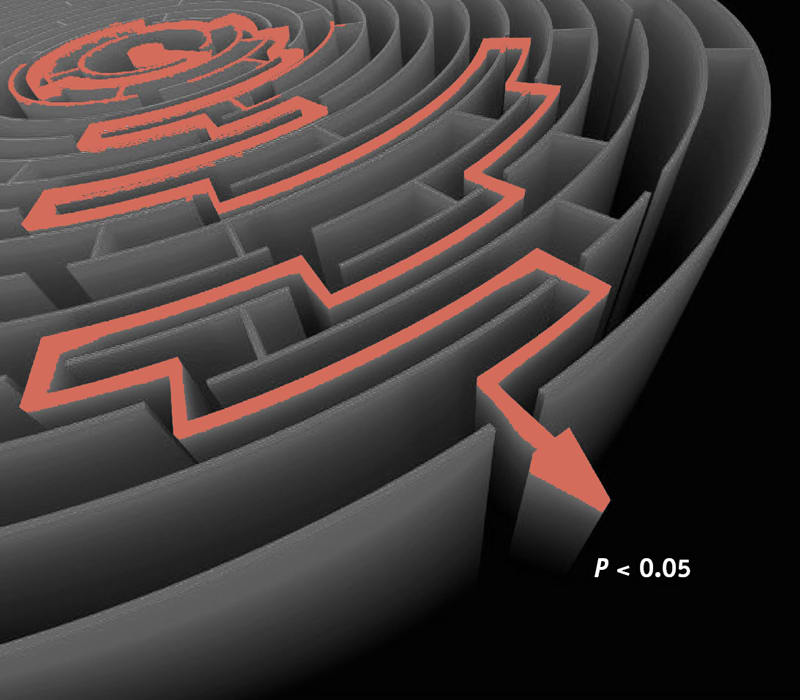 Analytical flexibility depicted by attempting to get through a maze