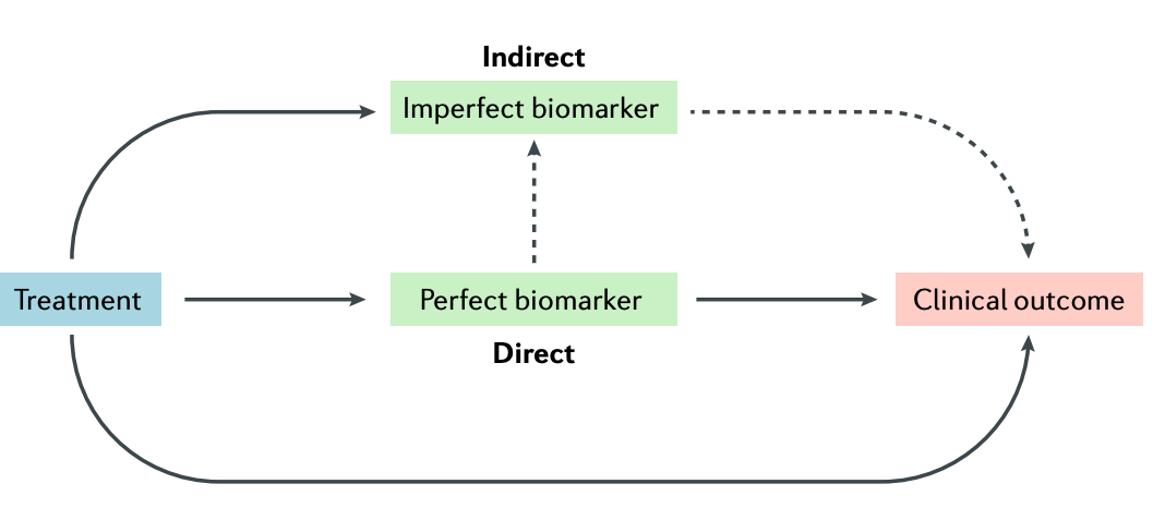 biomarker in causal pathway