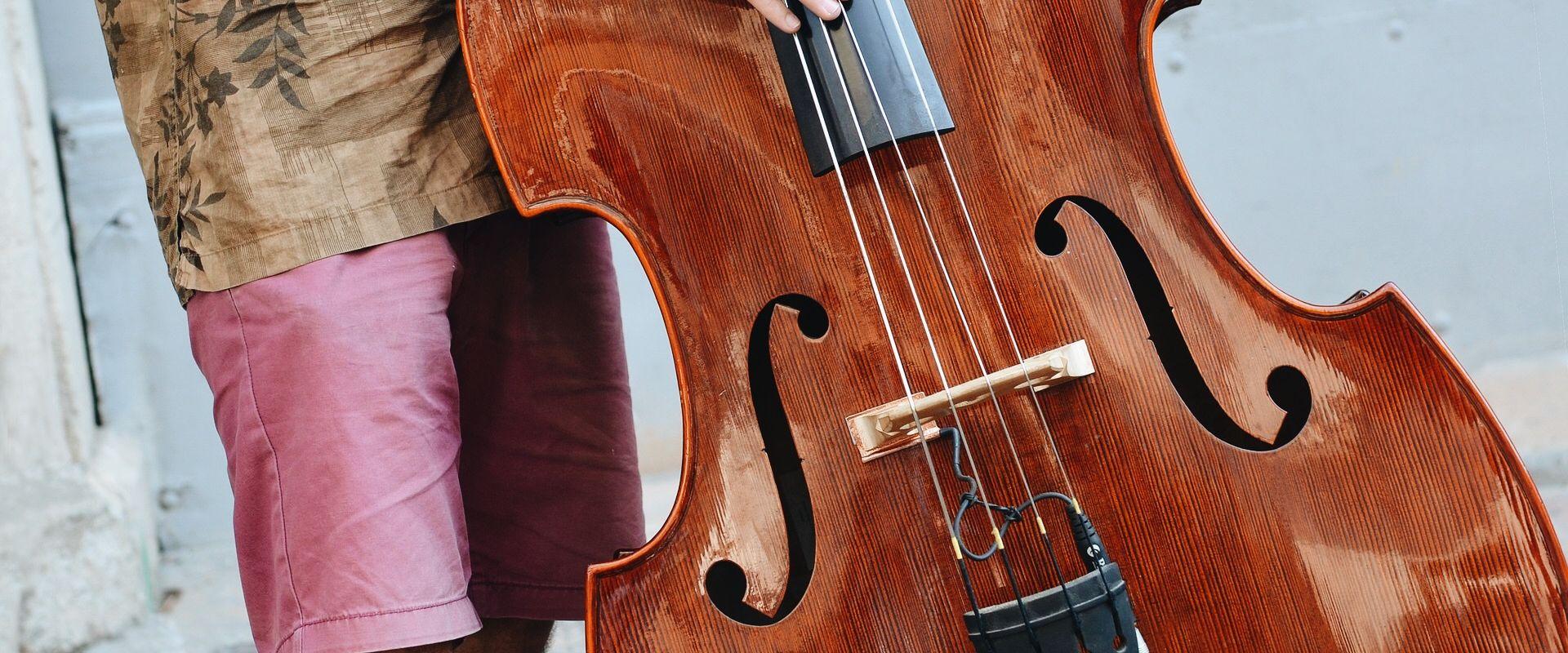 Titelbild des Blogartikels Das größte und tiefste Streichinstrument: der Kontrabass