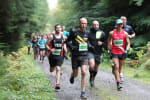 Hamsterley Forest 10K, Half Marathon & Marathon - May