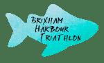 Brixham Harbour Triathlon