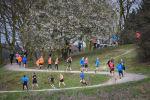 Lap Challenge Hadleigh Park