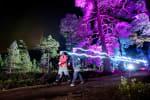 Illuminator Night Trail Race
