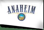 Anaheim 13th MEU Adoption Committee