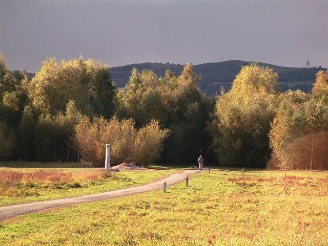 Race the River - Wrexham