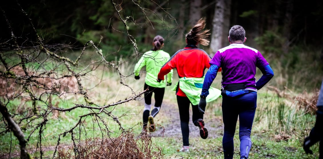 The Salcey Forest Christmas 10k & 5k