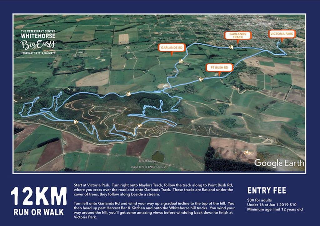 154942505891812km walk run .jpeg