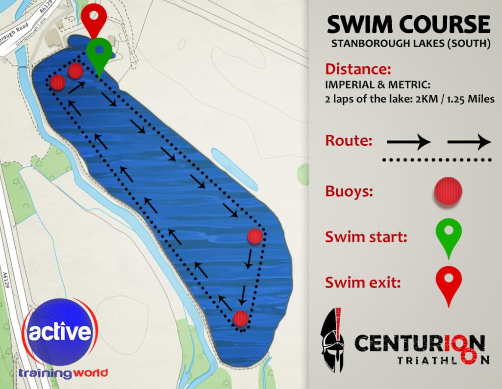 Swim-2.jpg