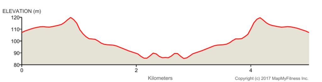elevation-1.png