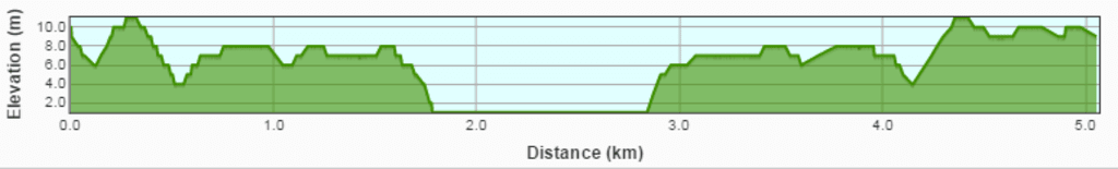 Capture-31.png