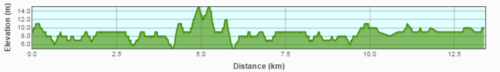 Capture-12.png