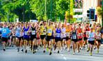 New Forest Marathon, Half Marathon, 10k & 5k