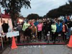 The Texas Quad - Charlie's Snake Wrangling Marathon