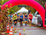 C&D Canal Half Marathon & 5K
