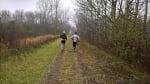 Wolf Pack Trail Run & Relay