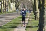 Holly Jolly Half Marathon, 10k & 5k