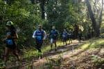 Whiskey Hill Redwood Run