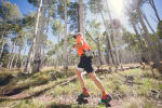 Flagstaff to Grand Canyon Stagecoach Line 100 Mile, 55K & Relays