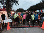 Whine Not a Marathon