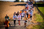 The Great Pumpkin Run: Iowa