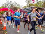 ACE Physical Therapy & Sports Medicine Institute Peace Marathon & Half Marathon