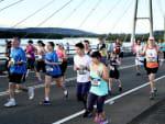 Bay to Bay Running Festival