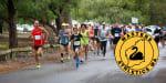 Masters Athletics WA Mill Point Road