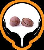Divine Mercy Family Foundation's logo