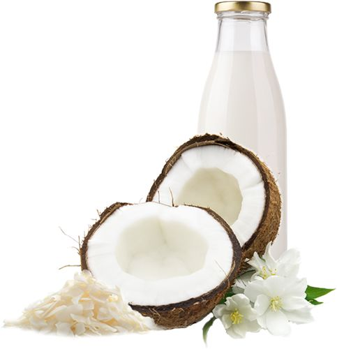 meal-kit-ingredient-Coconut Milk