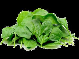 meal-kit-ingredient-