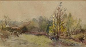 "Watercolour Titled ""evening Light"""