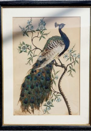 Victorian Peacock Piture Made From Real Peacock Feather