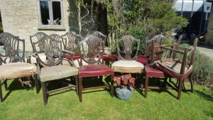 Harlequin Set  Of Chairs.