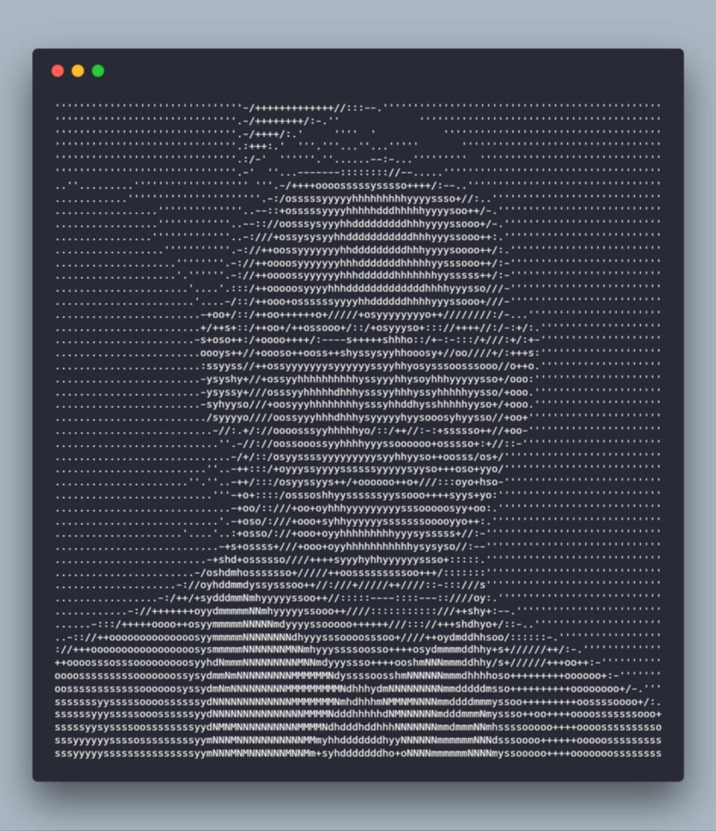 John Cena's beautiful face in ASCII art