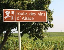 La route des vignobles d'Alsace 1