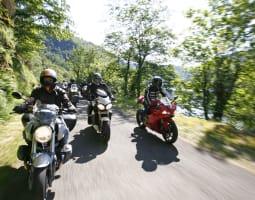 3- Auvergne Dafy Trip 3